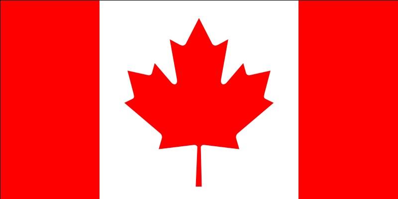Trouvez le nom de ce pays avec l'aide du drapeau présenté ici.