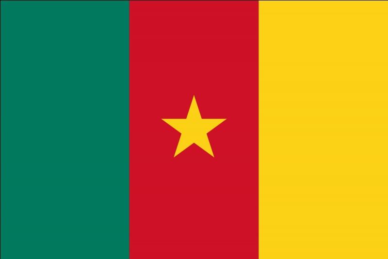 Lequel de ces pays a un drapeau comme sur la photo ci-contre ?