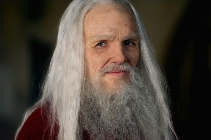 Quel est le nom que donnent les druides à Merlin ?