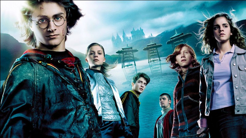 On commence facile.Quel personnage a fait le tournoi des trois sorciers et est un joueur professionnel de Quidditch ?