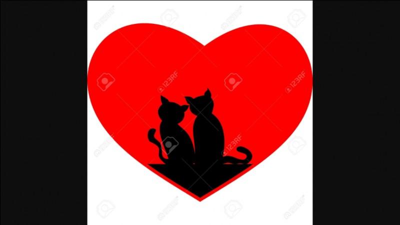 De qui Pelage d'Orage croit-il être tombé amoureux ?