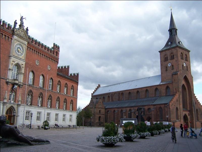 Odense, peuplée de 150 000 habitants, est l'une des plus importantes villes du pays. Dans quel pays se trouve-t-elle ?