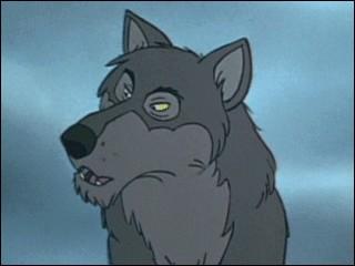 Et quel est l'animal Akela ?