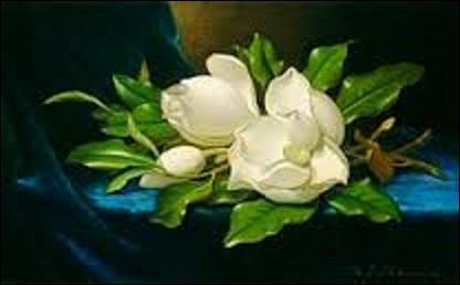 Peinte en 1890, cette nature morte intitulée ''Magnolias géants sur un tissu de velours bleu'' est l'œuvre d'un artiste américain (1819-1904) du mouvement Hudson River School et luminisme américain. Elle est considérée comme l'une des meilleures toiles de ce peintre spécialisé dans les natures mortes et les paysages. Pourriez-vous citer son nom ?