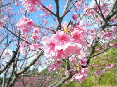 Avril est une commune du département dont la préfecture est Nancy :