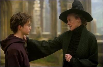 Êtes-vous sur de bien savoir qui est Harry Potter ?