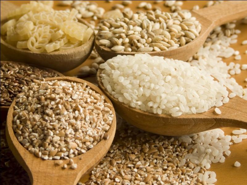 Les céréales appartiennent au groupe des :