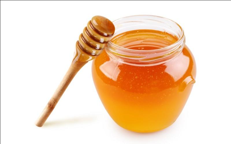 Le miel appartient au groupe des :