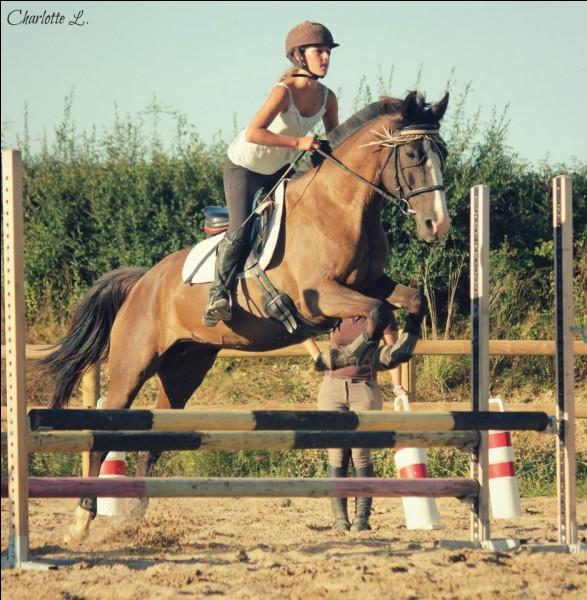 Vrai ou faux ? Un cheval peut sauter 1 mètre.