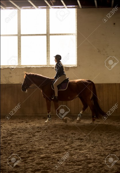 Où se déroulent les cours d'équitation ?
