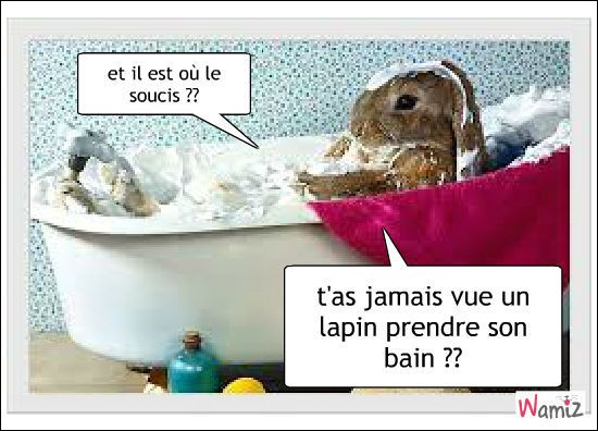 Doit-on laver les lapins ?