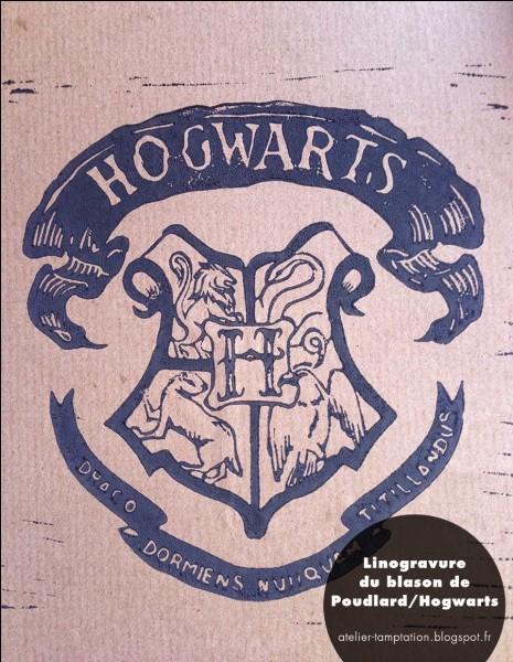 Quizz Ta Vie Dans Harry Potter Quiz Tests De Personnalit