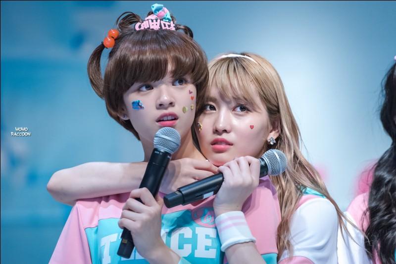 Quel surnom donnaient les membres à Momo et Jeongyeon ?