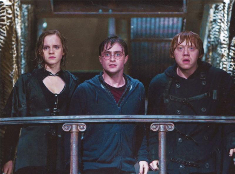 Qui Ron aime-t-il d'autre que sa meilleure amie Hermione dans le 6.