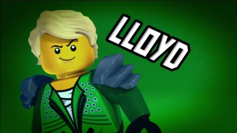 Qu'a fait accidentellement Lloyd ?