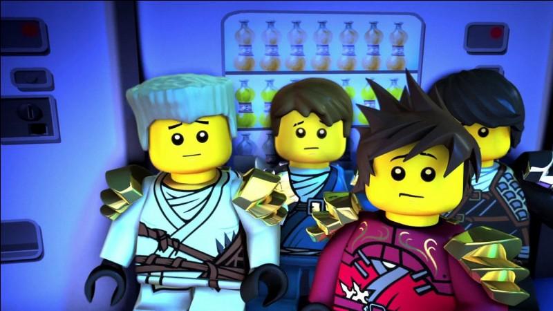 Qui sont les quatre ninjas ?