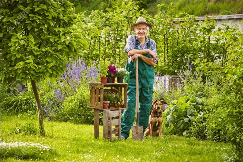 Quizz les diff rents m tiers quiz metiers for Jardins de jardiniers