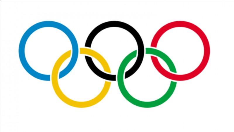 Où se sont déroulés les Jeux olympiques d'hiver de 2014 ?