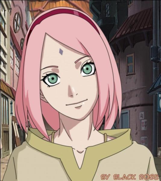Quel est le genre de manga/anime destiné aux femmes adultes ?
