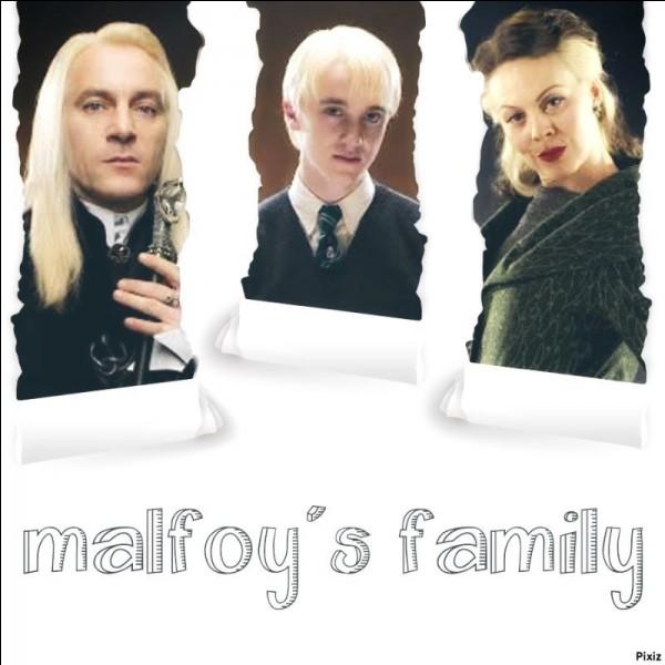 Le 31 juillet 1991, Drago se rend en compagnie de ses chers parents, Lucius et Narcissa, sur le Chemin de Traverse pour acheter ses fournitures scolaires. Dans quelle boutique fait-il la connaissance du célèbre Harry Potter ?