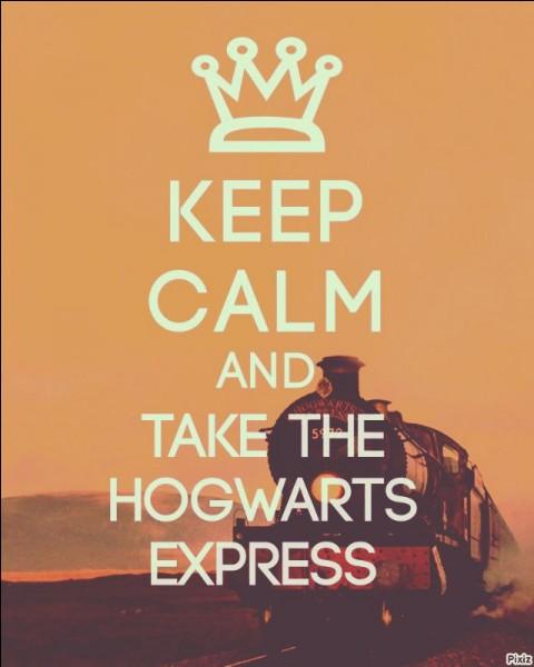 Le 1er septembre, Drago embarque à bord du Poudlard Express. Dans le train, il entend parler d'un sorcier du nom de Harry Potter. Il s'en va vérifier avec ses deux nouveaux amis. Voulant prendre les friandises de ce dernier, quel élève Croûtard va-t-il mordre ?