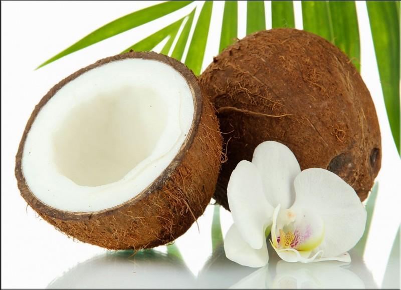 """De quelle famille la """"noix de coco"""" fait-elle partie ?"""