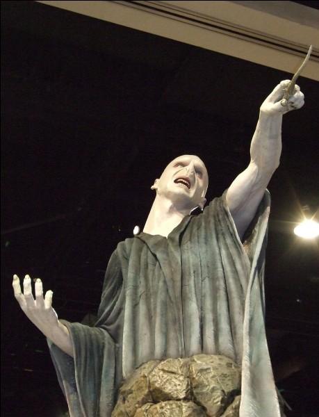 Combien y a-t-il d'Horcruxes du Seigneur des Ténèbres aujourd'hui (à l'heure où vous lisez ça) ?