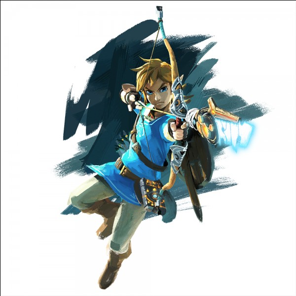 Comment s'appelle la tenue de Link ?