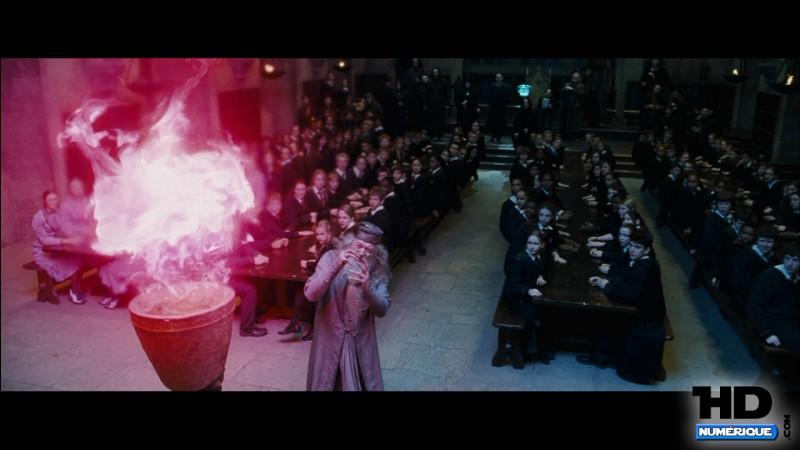 Quizz harry potter les films quiz films harry potter - Harry potter et la coupe de feu cedric diggory ...