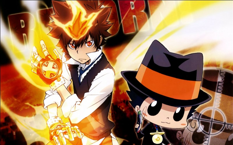 "Terminons avec ""The Katekyō Hitman Reborn !"". Combien de combats Gokudera Hayato a gagné ?"