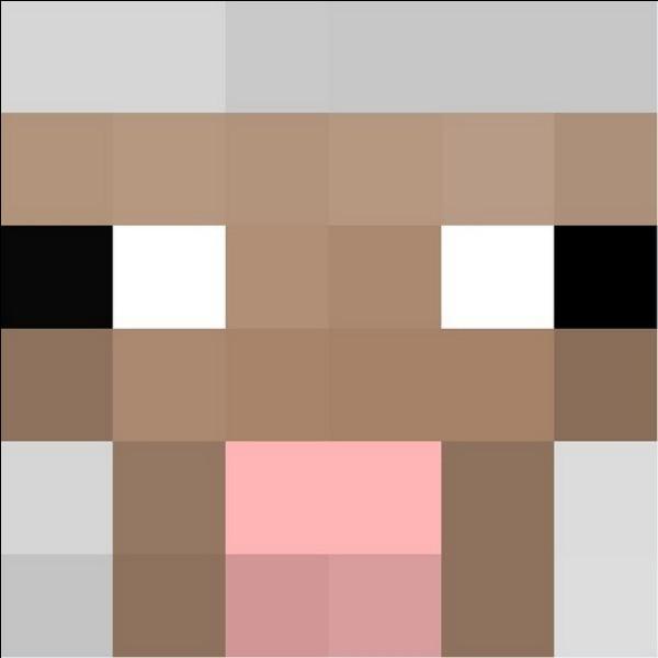Quel nom doit-on donner à un mouton pour qu'il change de couleur ?,