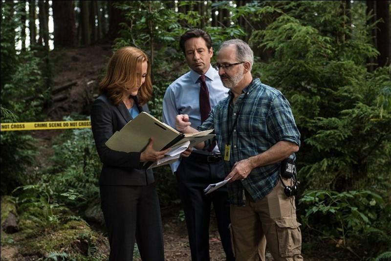 Toujours beaucoup de forêt dans le décor, et les fameuses bandes jaunes de scène de crime, tout indique qu'on est en présence d'une enquête de la série culte... ?