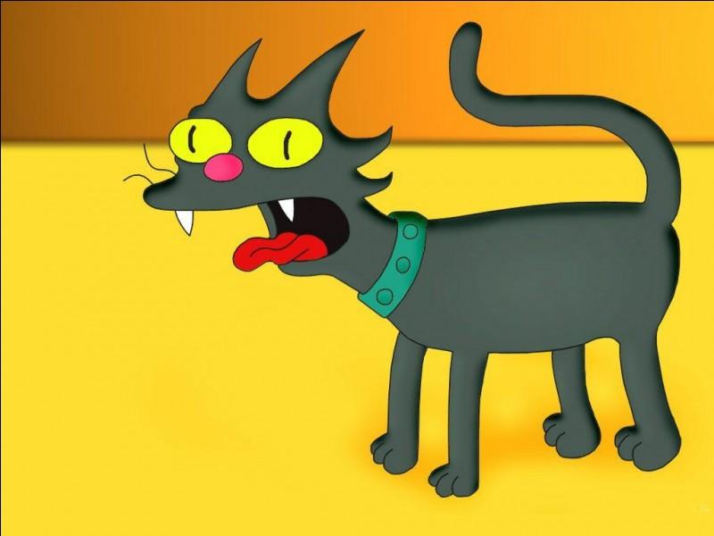 Comment s'appelle le chat des Simpson ?