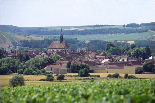 Quel département n'est pas voisin de celui de l'Yonne?
