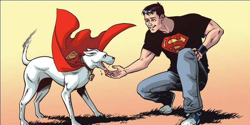 Comment s'appelle le chien de Superman dans l'univers de DC Comics?