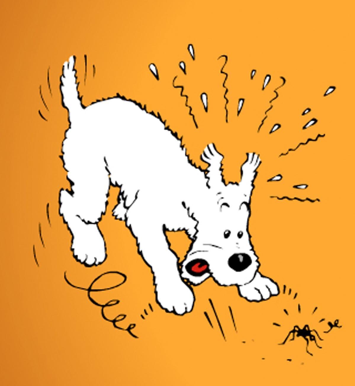 Les chiens de bandes dessinées