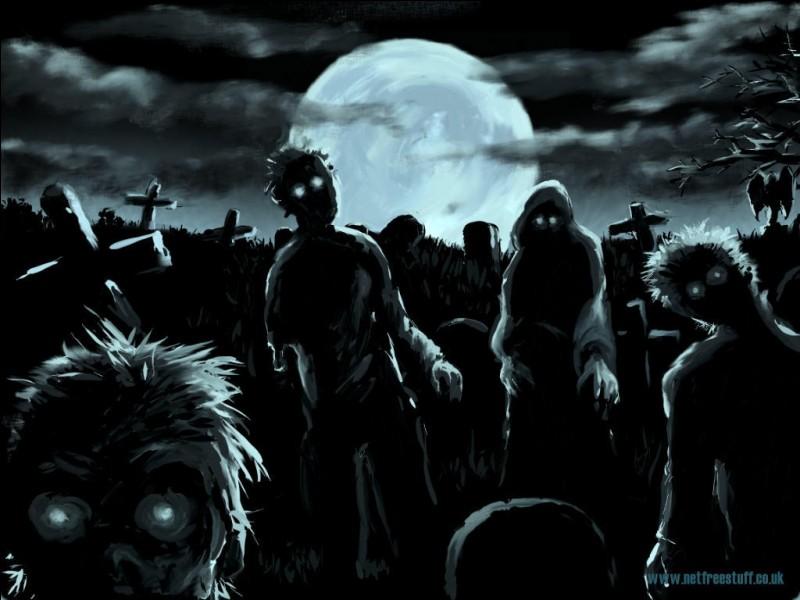Tu entends à la télé qu'une invasion zombie est en cours dans ton quartier. Que fais-tu ?