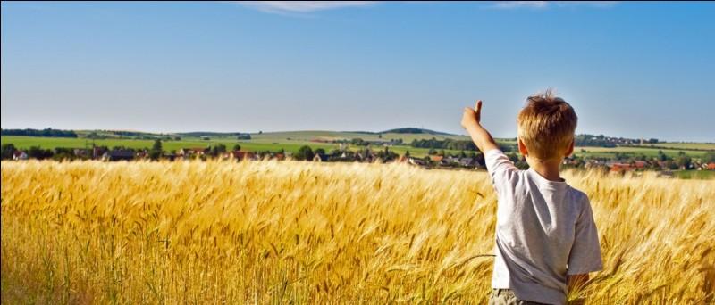 Que penses-tu du fait de renégocier la PAC des agriculteurs ?*PAC = politique agricole commune (européenne) assurant aux agriculteurs un prix minimum pour leurs productions. *Renégocier, l'augmenter du coup.