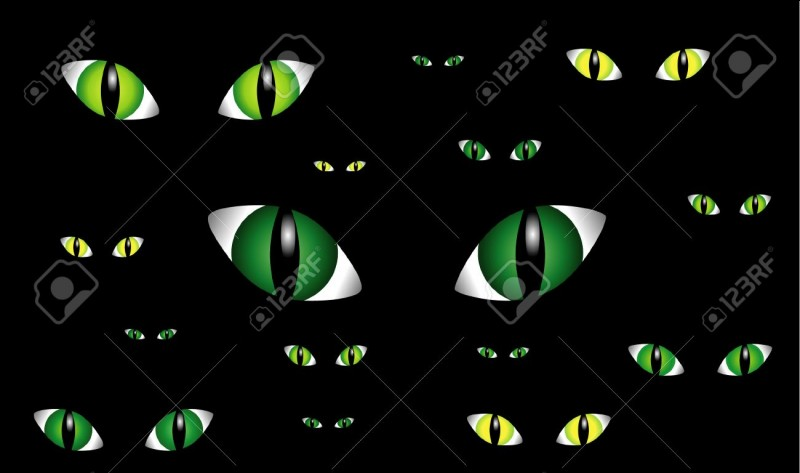 De quelle couleur seront tes yeux de félin ?