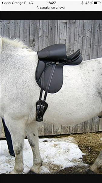 Comment sait-on si un cheval est correctement sangler ?