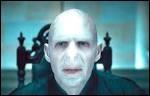 Qui est Voldemort ?