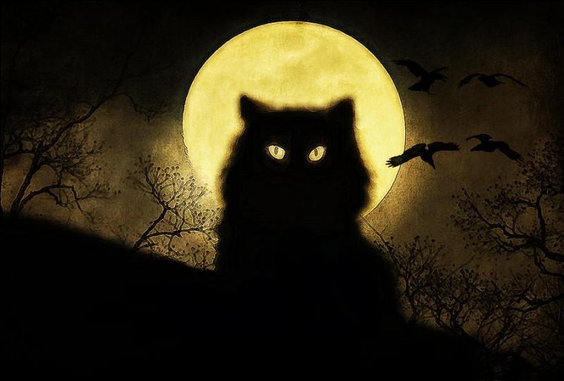 Dans la chanson de qui, la lune serait-elle ronde, serait-elle blonde ?