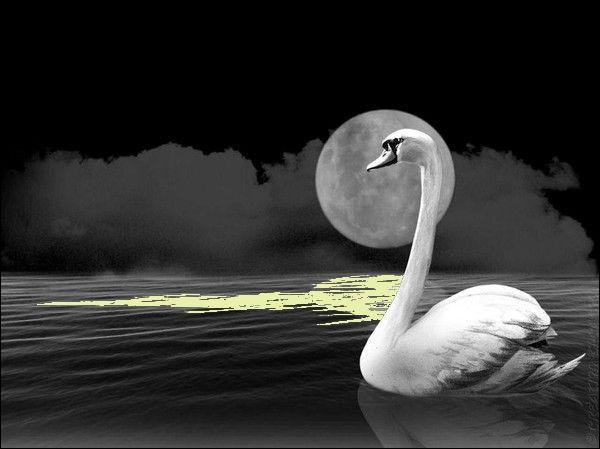 """Il chantait """"Sous la lune quelques-unes de mes pensées se défont"""", dans sa chanson """"Tu me corresponds"""" :"""