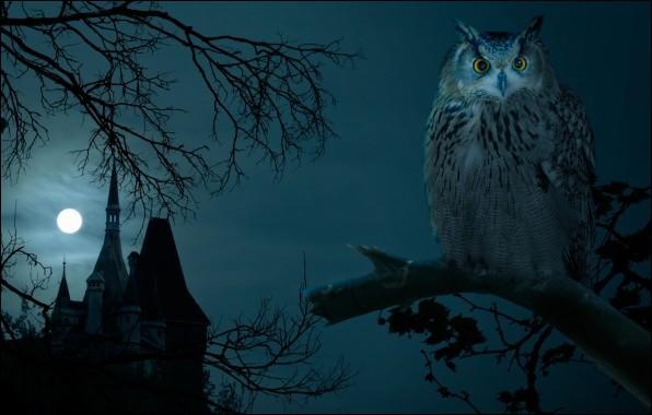 """A quelle écrivaine américaine doit-on le roman policier """"La maison au clair de lune"""" ?"""