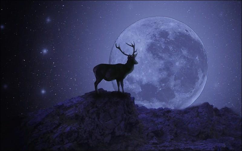 """Quand la lunaison est-elle nommée """"Lune rousse"""", redoutée par les jardiniers, car elle peut brûler les jeunes pousses ?"""