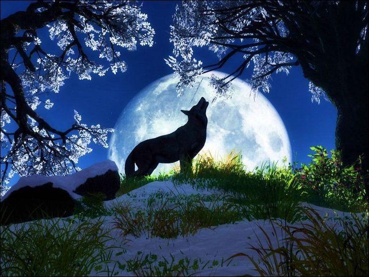 En culture générale, allez-vous décrocher la lune ?