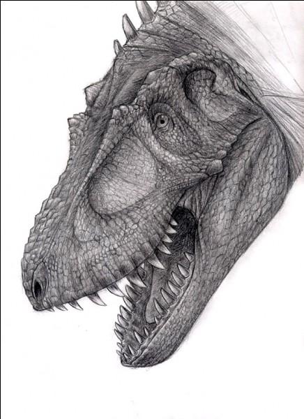 De quelle taille était estimé une dent de Daspletosaurus ?