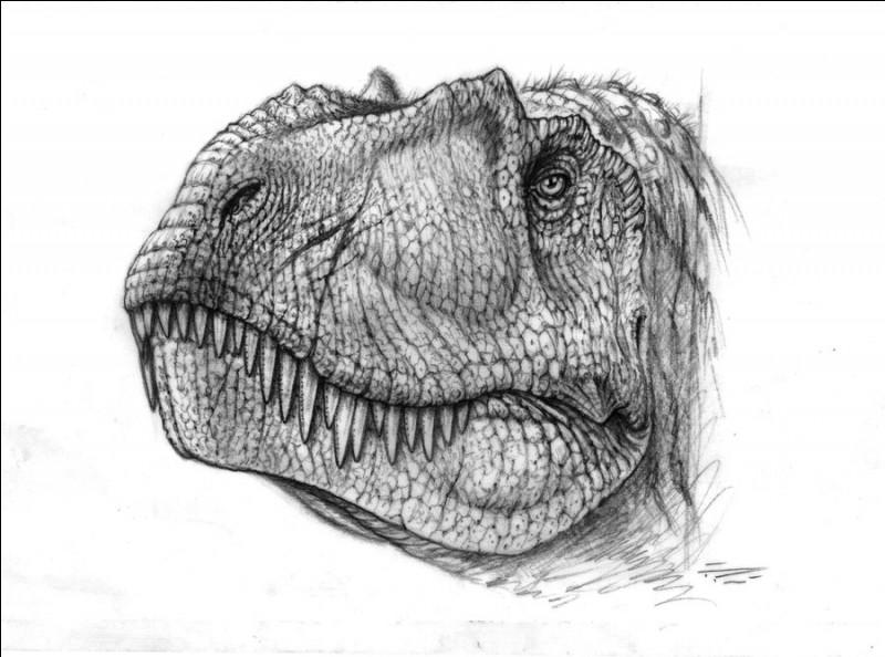 Quel est le spécimen de Daspletosaurus découvert le plus récemment ?