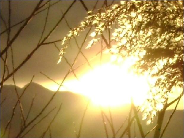 """Qui chantait """"Hello, le soleil brille brille brille !"""" (même pour la bonne du curé !) ?"""
