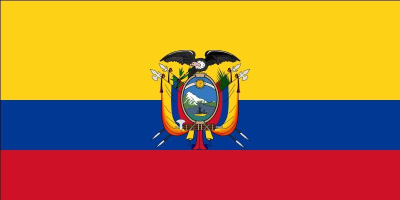 """Ce drapeau correspond à un pays commençant par la lettre """"D"""" ou la lettre """"E"""". Mais lequel ?"""